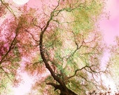 "Full Moon Surreal Pink Sky Tree Photography Pink Green Romantic Fantasy Art Print ""Pink Dream Full Moon"" Choose your size"