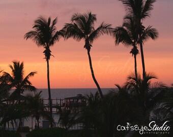 GOOD EVENING BAHAMAS Carribean Sunset Tropical Palm Tree Photography