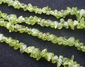 """Grade A Natural Gemstone Peridot Chip Beads 36"""" Strand"""