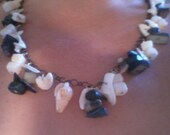 Back and white shell necklace