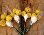 yellow and creme natural boutonnieres with feather (set of four)