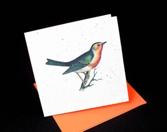 Beautifully Colorful and Detailed Vintage Print of a Red Robin / Eco-Friendly Plantable Seeded Card