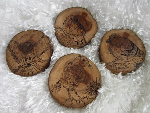 OOAK Wildlife/Nature Sketched & Woodburned Coasters by A.Powers Set of 4 Birds