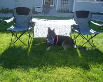 Dog Gone Shady, a portable pet shade that attaches to 2 portable camping chairs