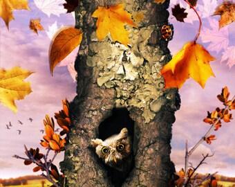 Autumnal Equinox 2011