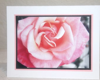 Photo Card, close up of pale pink rose, pink and black