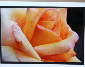 Photo card, yellow rose, peace rose, flower photograph