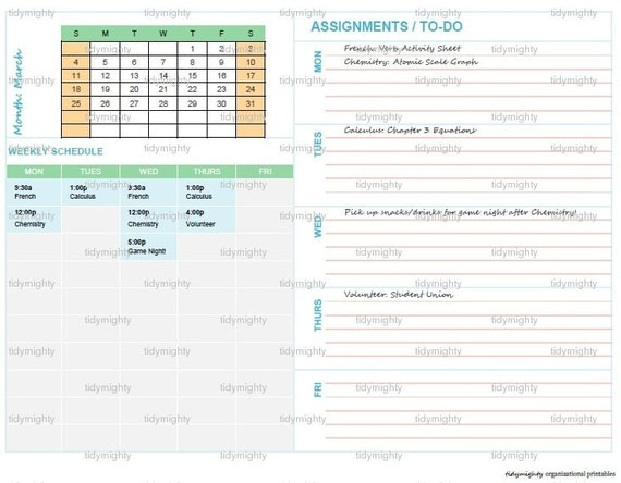 Student Schedule Planner / Organizer (Back to School) - Printable PDF (INSTANT DOWNLOAD)