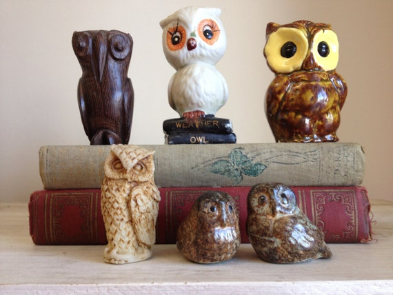 6 vintage owls whooos the handsome one