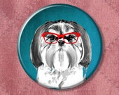 """Dog Pin Smarty Pants Shih Tzu in red glasses - Pinback Button Badge -  2.25"""" Two Inches"""