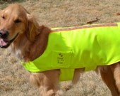 Safety  First  Highly Reflective Bright Yellow Large Dog Jacket