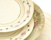 Vintage Nippon Rose Nagoya Porcelain Plates Instant Collection