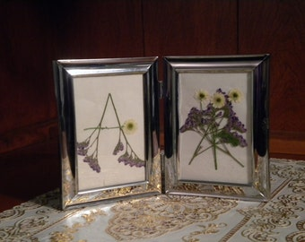 Sale - A is for Airy Pressed Flower Art