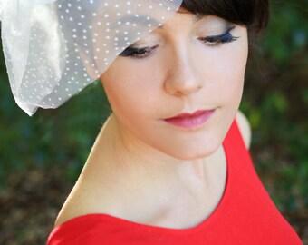 Polka dot vintage veiling blusher birdcage veil