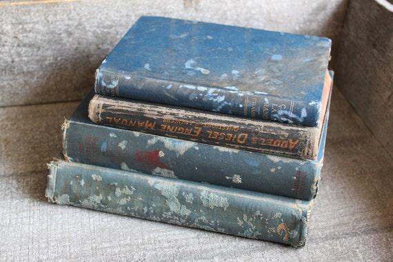 Reserved For Dottie  Cottage Chic Vintage Blue Book Bundle