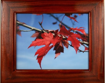 """African Padauk Picture Frame (Picture Size is14"""" x 11"""")  (Price is for Frame Only)"""