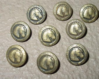 """Vintage Equestrian Antique Brass Look Horse Head Buttons set of 6 Pieces Rare  Custom Made 1/2"""""""