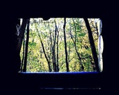 Lookout - Log Cabin Window Fall Forest Nature Landscape Photography Print Autumn Home Decor Wall Art