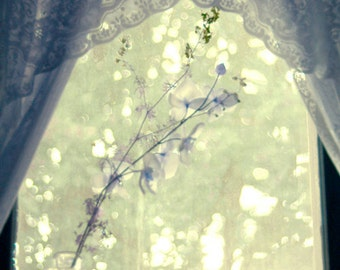 White Flowers and Lace, Window Sill Sunset - Photography Print 5x7