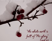 Nature photography/winter/READY TO SHIP/Snow covered winter berries with Scripture-12X12/Christmas Art Print