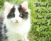Note card-Kitten with Bible Verse-5X7notecard-, young black & white kitten