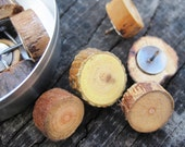Rustic Wood push pins. Perfect for Bulletin Boards - Set of 12