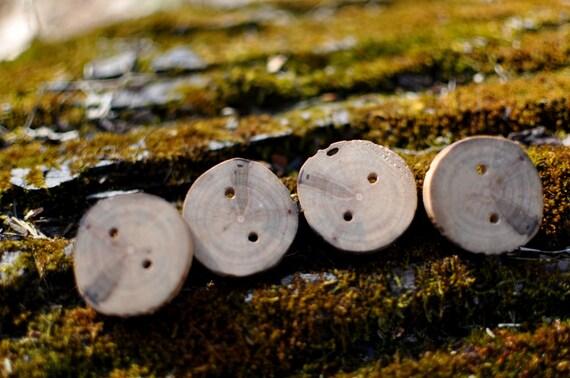 Handmade Locust Buttons (Set of 4)