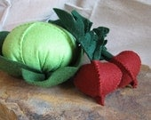Springtime Garden Veggies Felt Food Kit