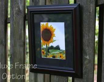 Framed Photo Deluxe Option for 11x14, Framed Artwork, Framed Photography