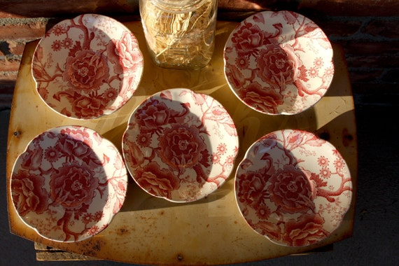 Chippendale english plates 5 pink and red