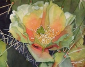 """Cactus flower,  cactus, desert, Prickly Pear Cactus, Green, Orange, White,WATERCOLOR PAINTING, southwest , giclee 8"""" x 8"""""""