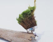 Moss Ring, Eco-Friendly, Earth Day Ring, Statement Ring