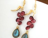 Labradorite Garnet Gold Filled Earrings