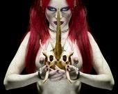 Witchcraft, dark art, witches, redhead, vampire, vamp, occult art, bone mask, seventh son, red hair, pale skin, Poison Witch - photo print