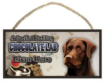 "A Spoiled Rotten Chocolate Lab (Labrador Retriever) Lives Here 10"" x 5"" Wooden Sign v2"
