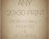 Any 20x30 Print. Professionally Mounted. UV Protective Coating On Print.