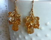 Gold Stainless Steel Nickel Free Natural Citrine Earrings FREE SHIPPING