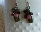 Stainless Steel Nickel Free Natural Green Garnet and Watermelon Tourmaline Earrings FREE SHIPPING