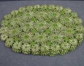 Vintage Set of 4 Lime Green & White Straw Daisy Flower Placemats
