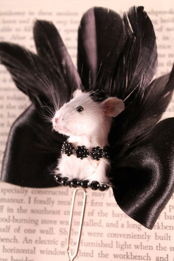 Taxidermy Mouse Burlesque Inspired Hair Pin