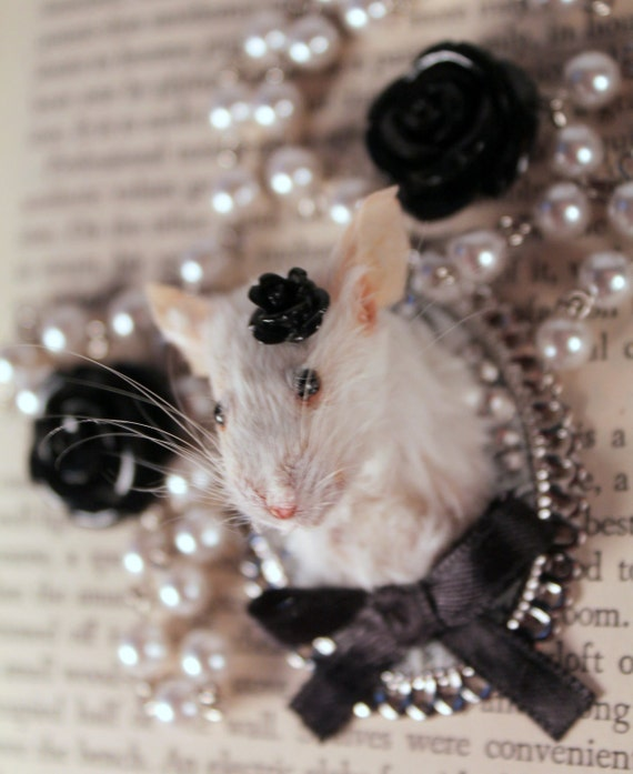 Taxidermy Mouse 'Game Head' Style Necklace in Black