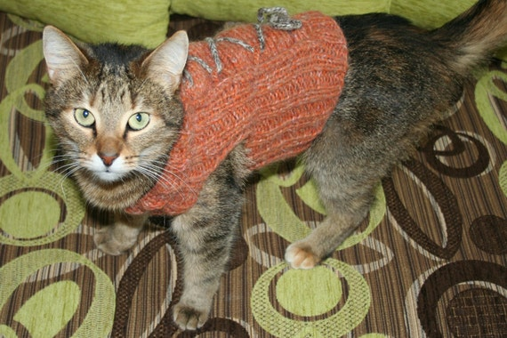 FREE SHIPPING Knit Cat/Dog Sweater with Lace