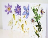 Blank Notelets, 4 Pack, Assorted Blue Flowers, Passiflora, Clematis, Pulsatilla, Deckle Edged Card