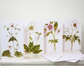 Blank Note Cards, 4 Pack, Assorted White Flowers, Anemone, Helleborus, Deckle Edged Card