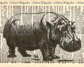 Hippopotamus Printed on Vintage Dictionary Page - Dictionary Art Print - Upcycled Page - Wall Hanging - Home Decor - Illustration - Animal