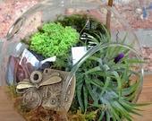 Steampunk Air Plant Terrarium - A Perfect Birthday or Housewarming Gift