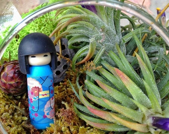 Japanese Kokeshi Doll and Air Plant Moss Terrarium - A wondeful birthday gift idea