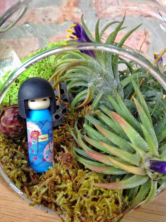 Japanese Kokeshi Doll and Air Plant Moss Terrarium - A wondeful birthday gift idea