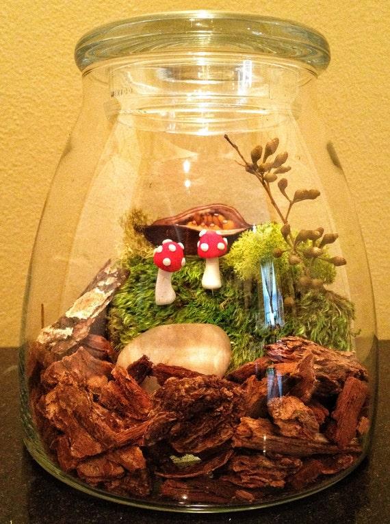 Custom for Amanda - Totally Care Free Maintenance Free Mushroom and Moss Terrarium