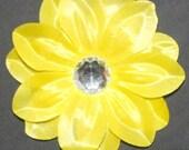 Golden Yellow Tropical Lillies